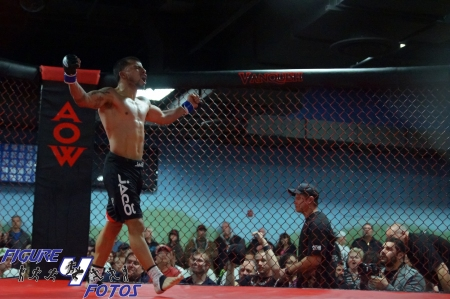 Art of War MMA 1-28-12-33